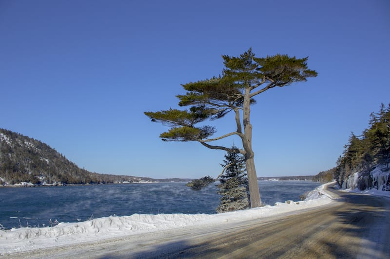 Acadia National Park in the Winter with a view of Mt. Desert Narrows.