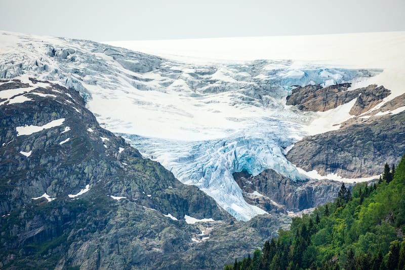 Folgefonna glacier cap in the mountains with forest in the foreground, Odda, Hardanger region