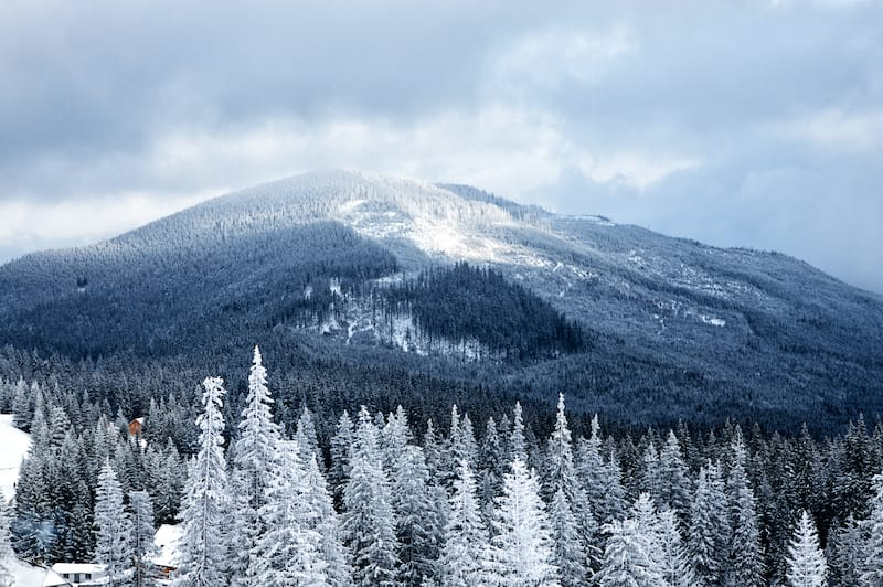 Great Smoky Mountains National Park in winter