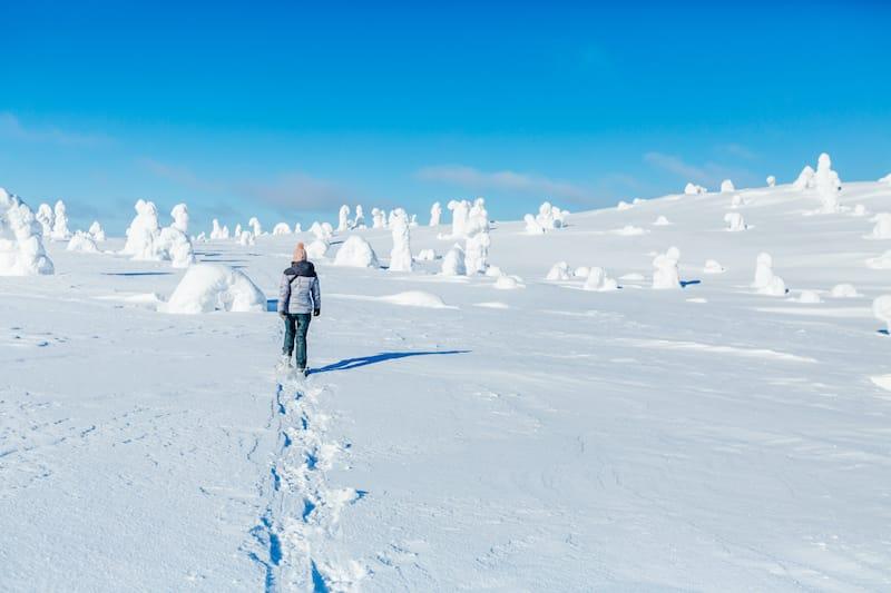 Lapland snowshoeing in Finland