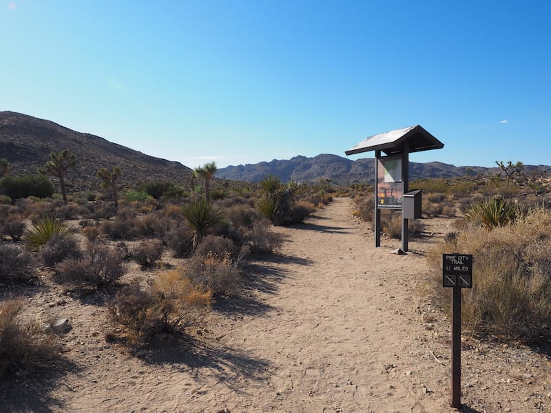 Pine City trail in Joshua Tree National Park