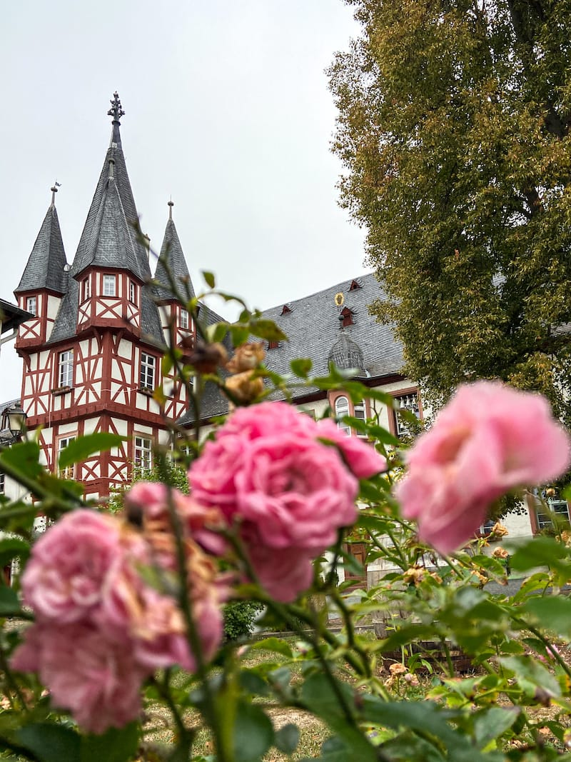 Things to do in Rudesheim am Main, Germany