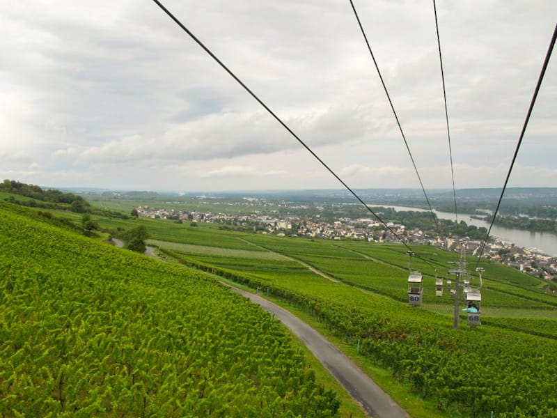 Rudesheim Things to do travel guide-4