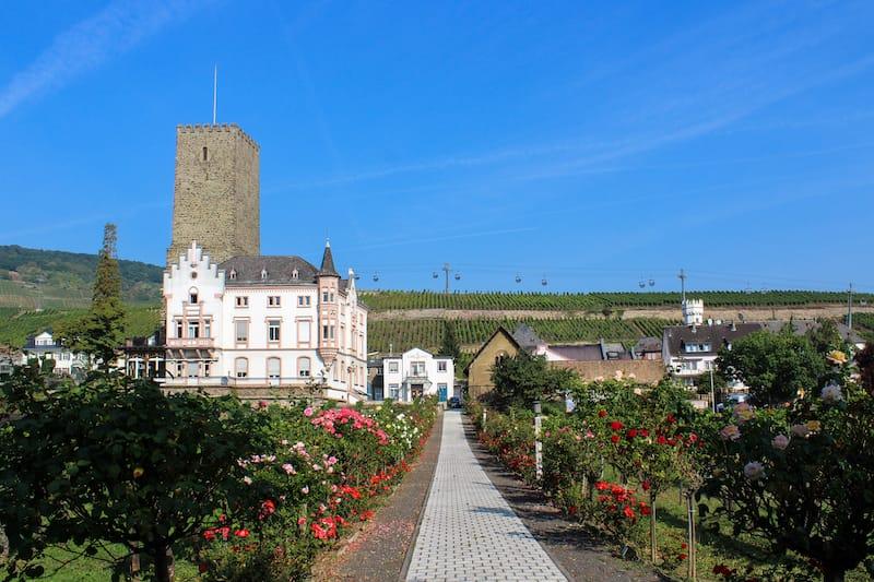 Boosenburg Castle in Rudesheim