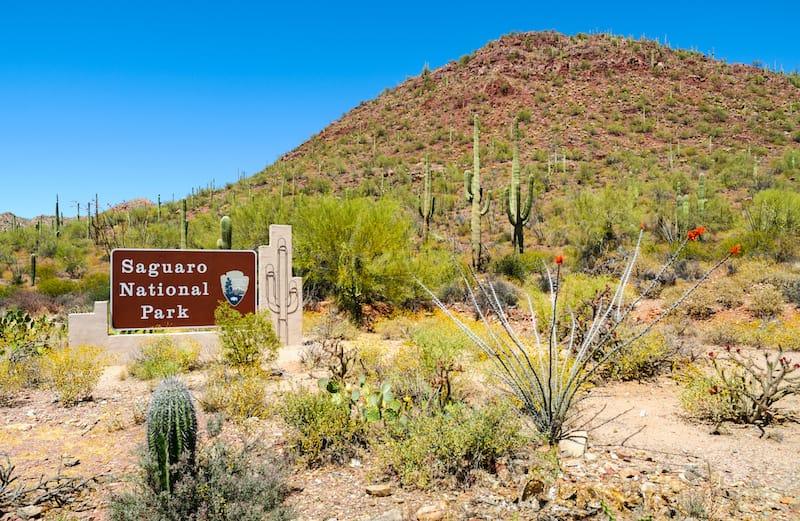 Welcome Sign at Saguaro National Park