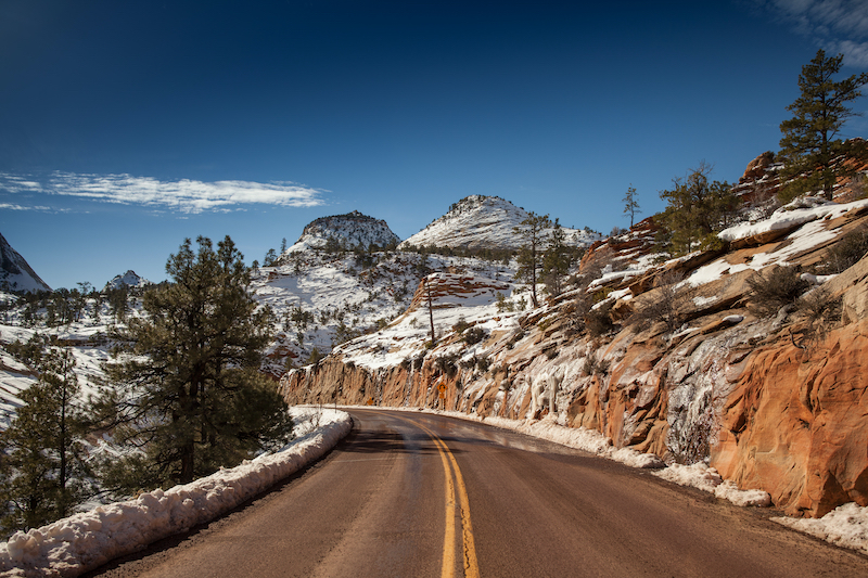 Zion in January