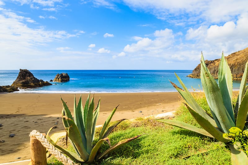Prainha beach with tropical plants in foreground near Canical town