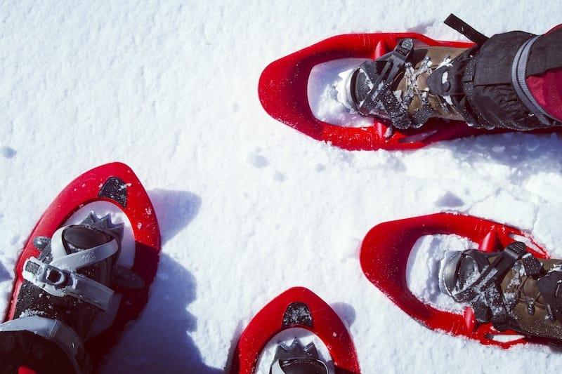Snowshoeing in Glacier Lake National Park