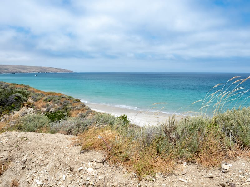 Water Canyon Beach, Coastal Road, near Ranch at Bechers Bay Pier on a sunny spring day, Santa Rosa Island, Channel Islands National Park