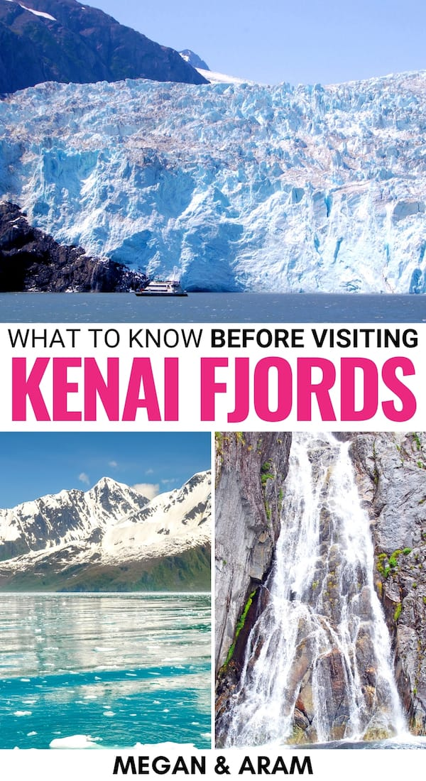 Is Kenai Fjords National Park on your Alaska bucket list? This is a guide of things to do in Kenai Fjords National Park - from glaciers to whales and beyond! | Exit Glacier | Alaska national parks | Alaska glaciers | Visit Kenai Fjords | Alaska whale watching | Kenai Fjords hiking | Kenai Fjords cruises | Kenai Fjords boat trips | Things to do in Seward | Seward Alaska