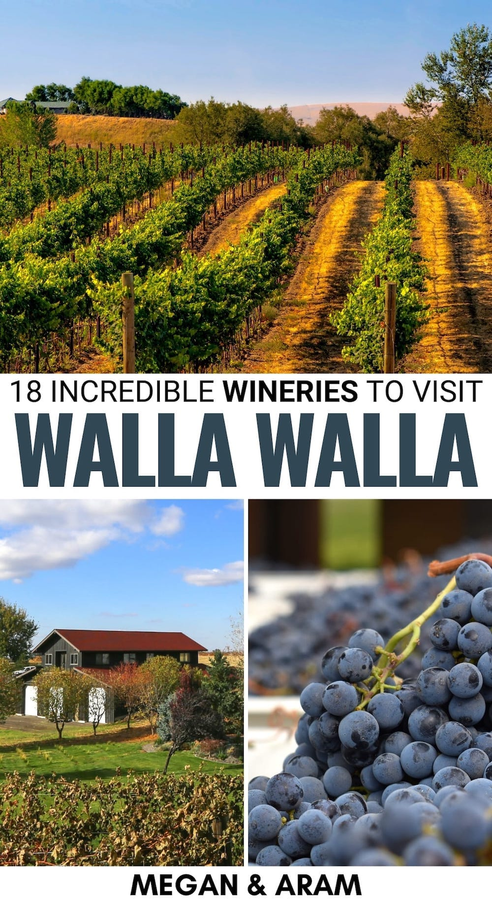 Do you have plans to check out the best Walla Walla wineries? This guide leads you to the finest wineries in Walla Walla Valley - including many tasting rooms! | Walla walla wine tours | Wine in Washington | Washington wine | Walla Walla wine | Walla Walla Valley wine | Washington vineyards | Walla walla vineyards