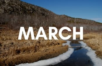 National Parks in March