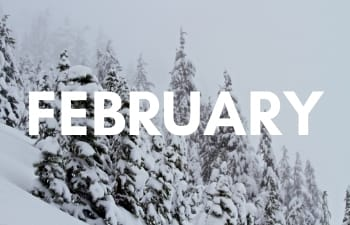 National Parks in February