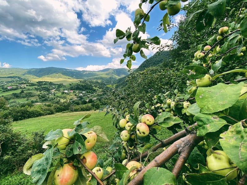 Debed village Armenia