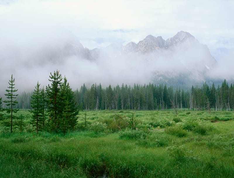 Fishhook Creek trail in Idaho