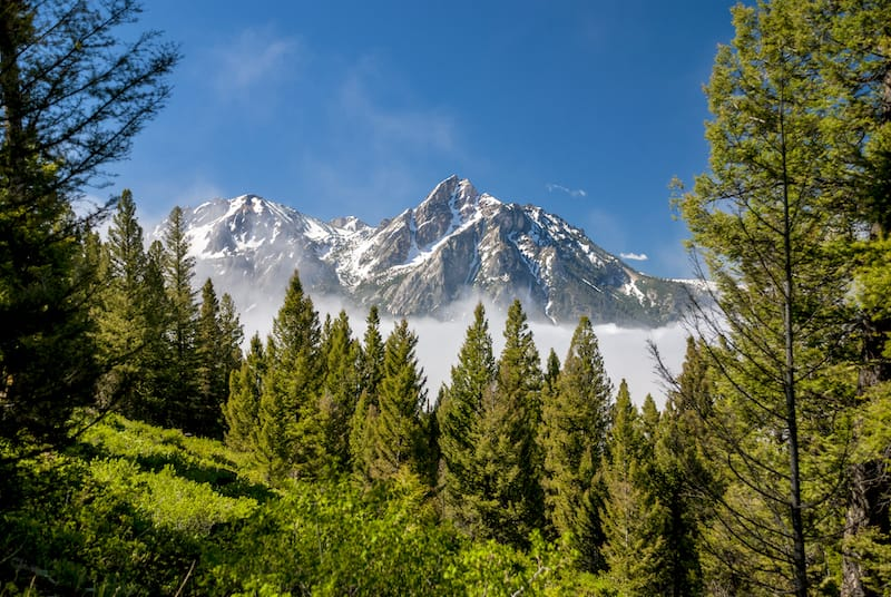 Things to do in Stanley, Idaho