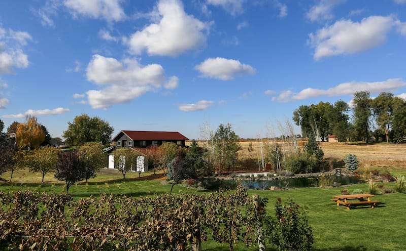 The best Walla Walla wineries