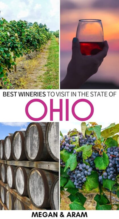 Wine in Ohio is not nearly talked about enough! This guide lists great Ohio wineries and includes a map to the best wineries in Ohio to add to your bucket list! | Ohio wine | Ohio vineyards | Ohio winery | Ohio wine trail | Ohio wine tour | Ohio wine country | Winery ohio | Best winery in Ohio | Columbus Ohio winery | Cincinnati Ohio winery | Geneva Ohio winery | Northeast Ohio winery