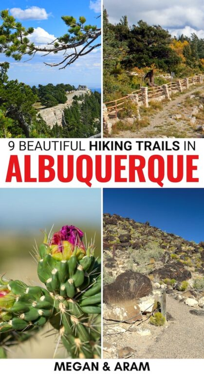 Are you wanting to escape the city and New Mexico heat? These hiking trails in Albuquerque will help you do just that - these trails are perfect for any skill level! | Albuquerque hiking | Hiking Albuquerque | Albuquerque trails | Day hikes Albuquerque | New Mexico hiking | New Mexico outdoors | New Mexico trails | Best hikes in New Mexico | Sandias hiking | Petroglyphs National Monument hiking | Best trails in New Mexico | Sandias trails | Waterfall hikes in New Mexico