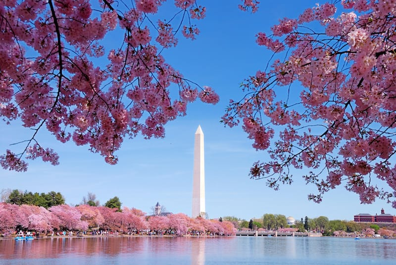 Best places to visit in April in the USA - Washington DC