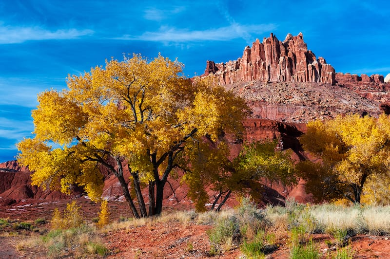 Capitol Reef National Park things to do