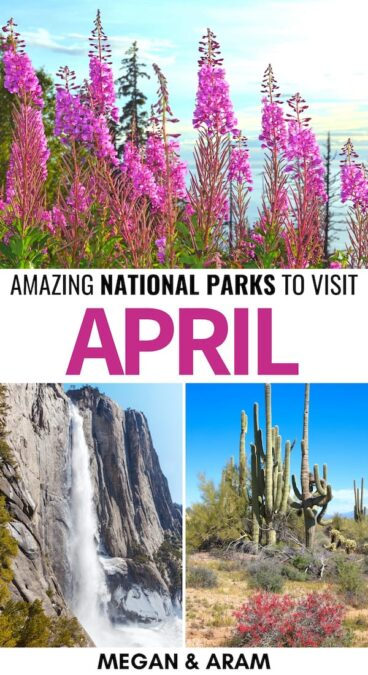 15 Best National Parks to Visit in April (+ Spring Tips): Are you looking for the best national parks to visit in April? This guide details fifteen great US National Parks to visit in April and gives many spring tips. | Places to visit in USA | USA National Parks | America National Parks | Yosemite National Park | Alaska National Parks | Shenandoah spring | National Parks to visit in spring | USA spring | National parks April | Grand Canyon spring