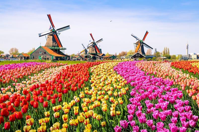 Netherlands in April