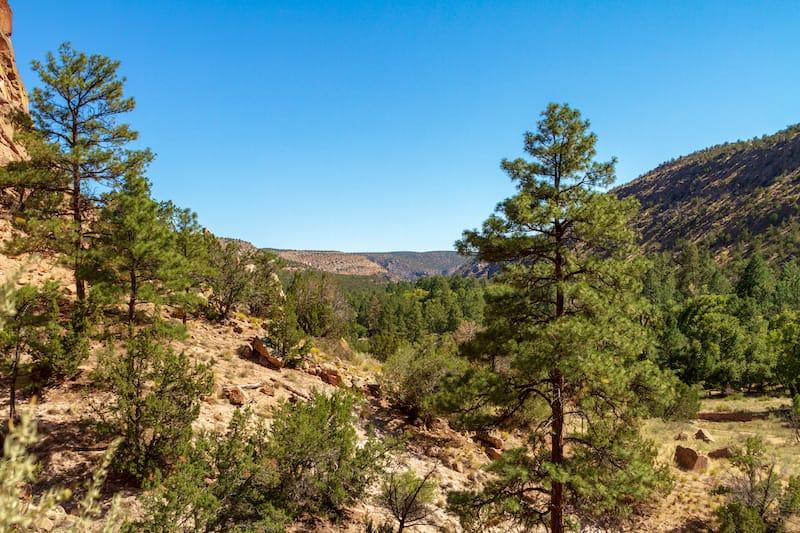 Pino Trail in Albuquerque NM
