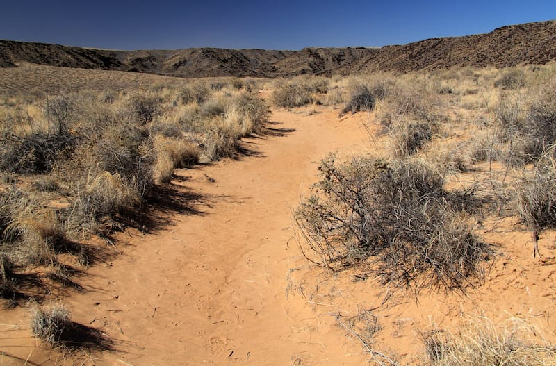 Rinconada Trail, Petroglyph National Monument, New Mexico
