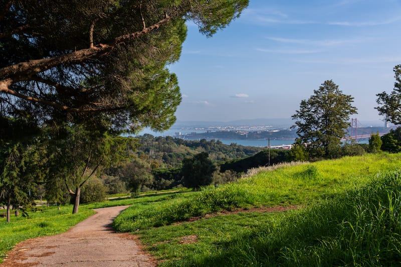 Monsanto Park in Lisbon