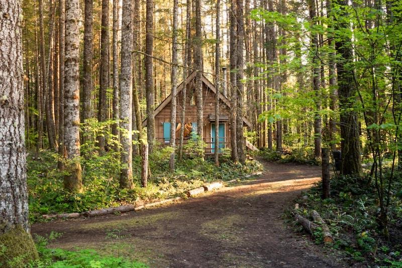 Mt Rainier Cabin WiFi, Hot Tub, Near National Park 2