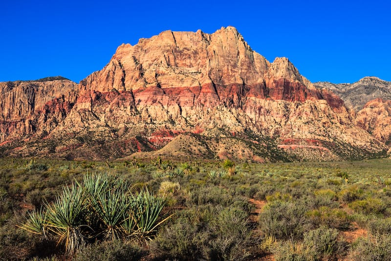 Red Rock National Conservation Area, Nevada