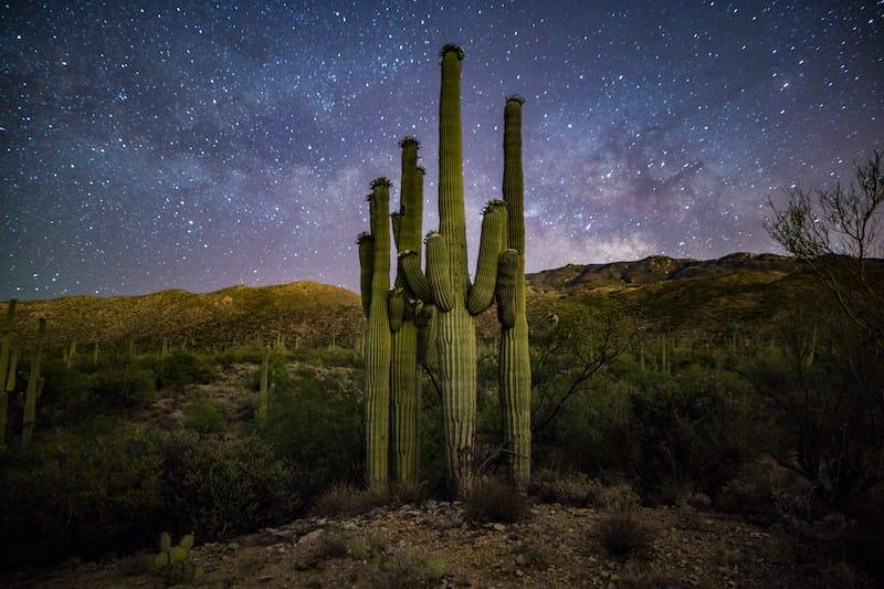 Saguaro National Park stargazing