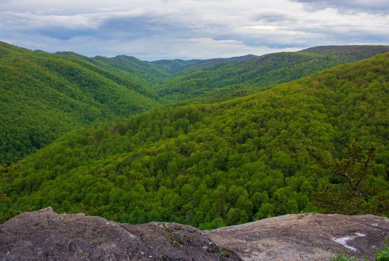Shenandoah National Park in May