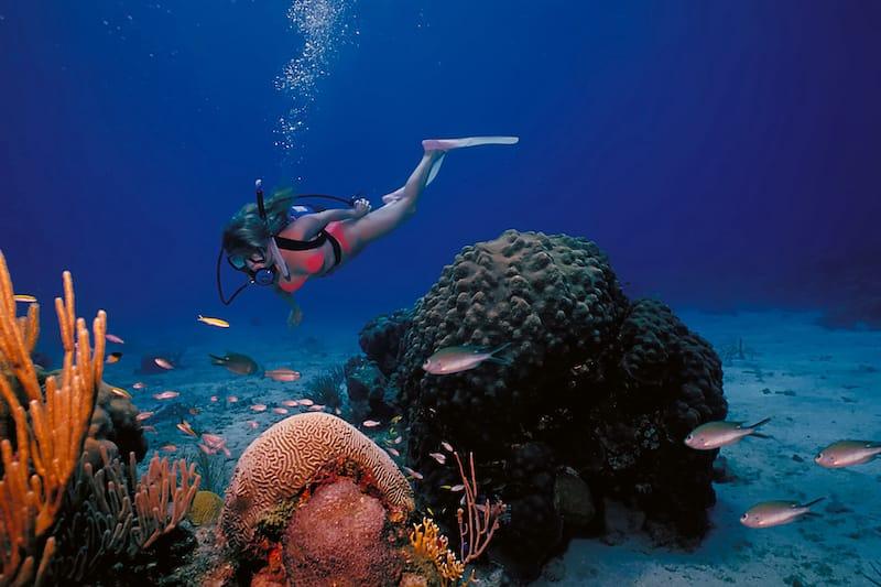 Diving in USVI