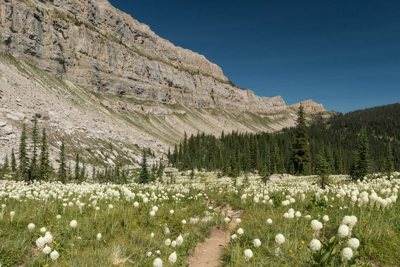 Chinese Wall in Bob Marshall Wilderness