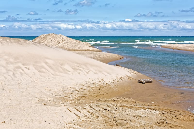 Indiana Dunes National Park in July