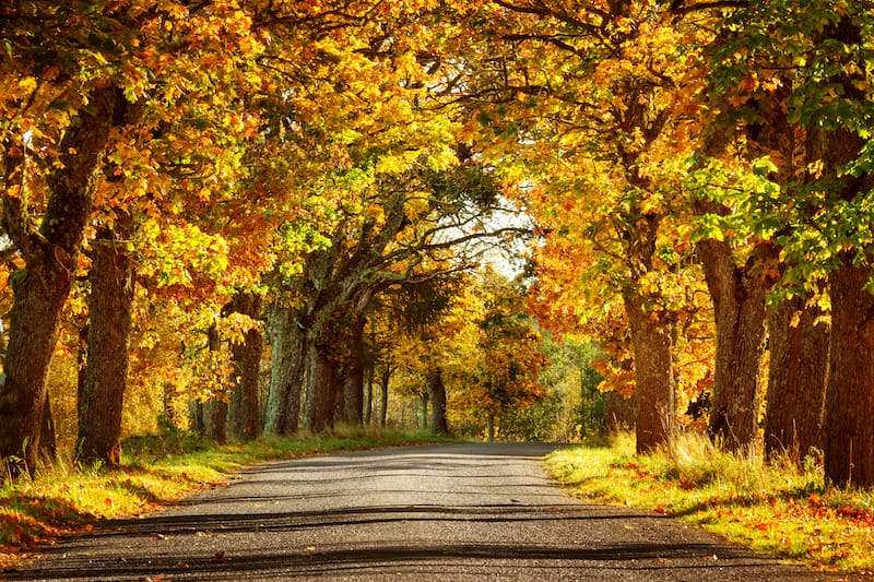 One week in Estonia itinerary