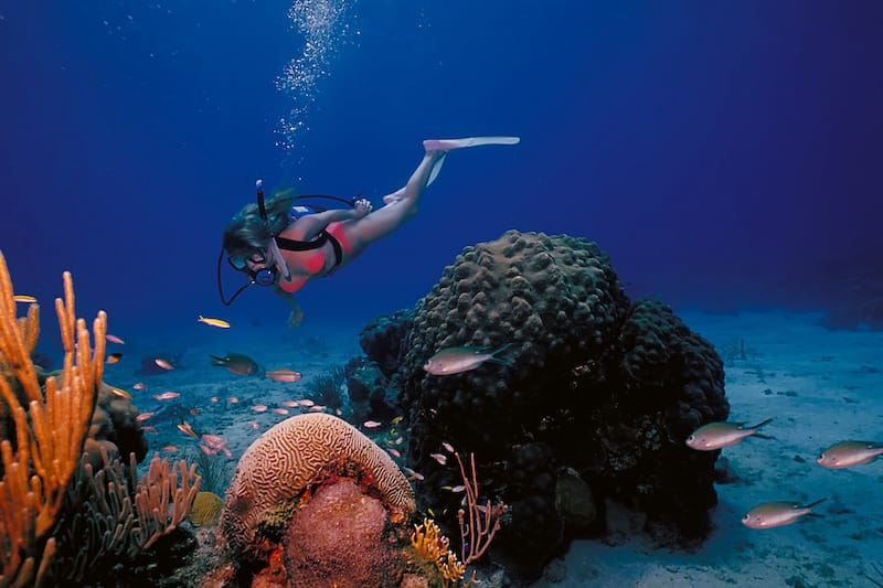 Scuba diving with Diving STX