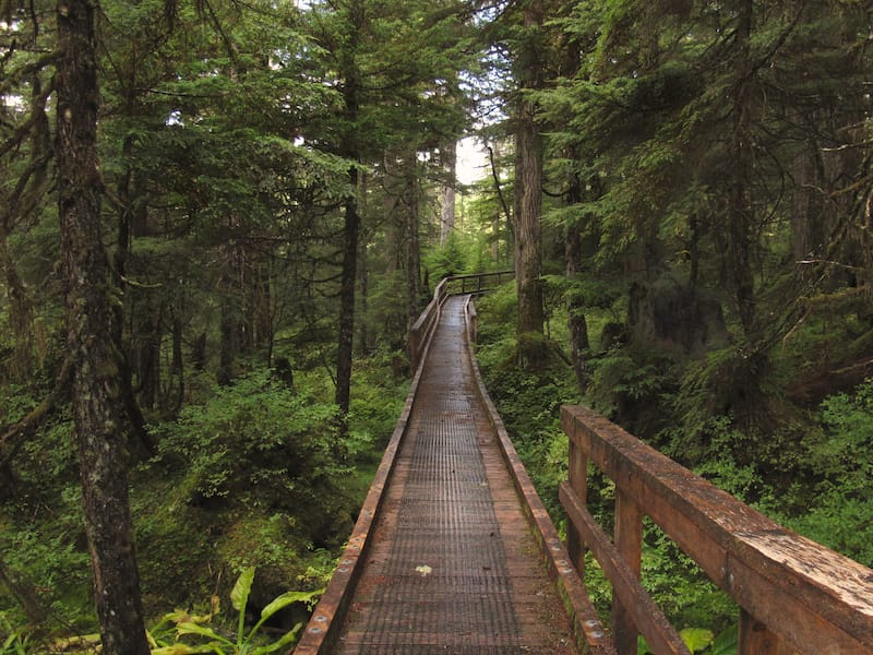Beaver Falls Trail on Prince of Wales Island
