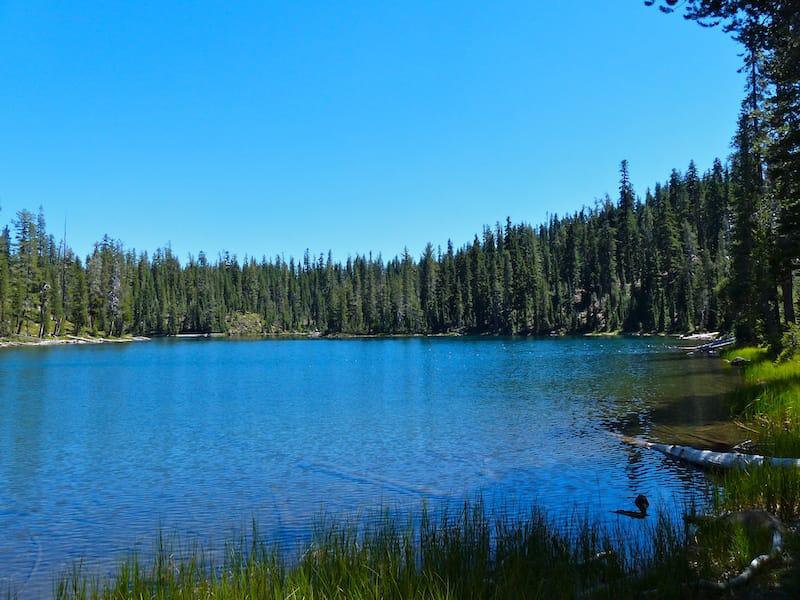 Echo Lake Trail