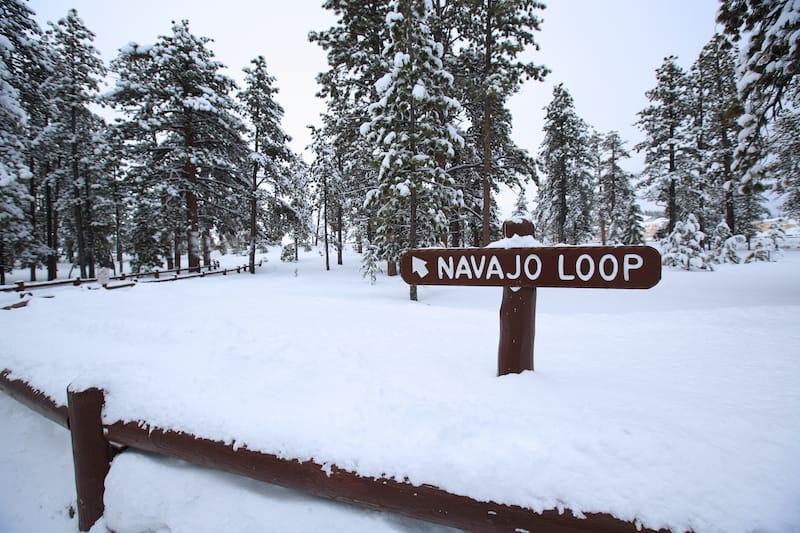 Navajo Loop in winter