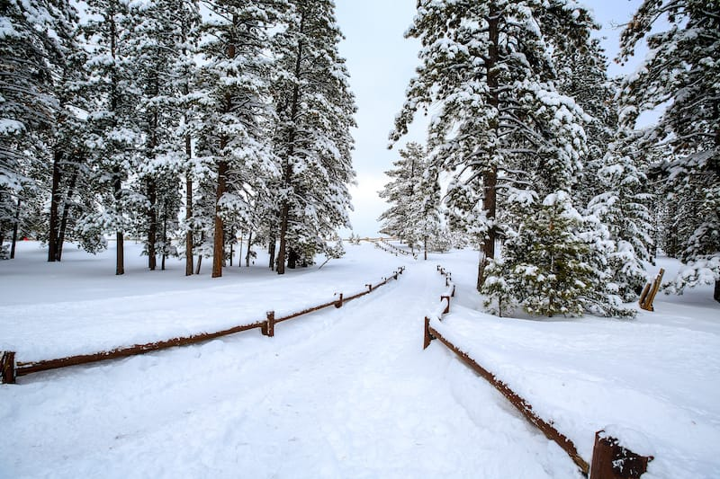 Places for snowshoeing in Bryce Canyon
